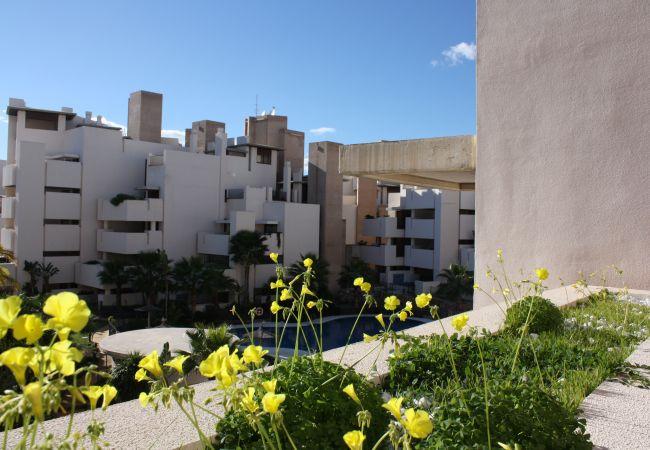Apartamento en Estepona - 117 - Penthouse with Pool